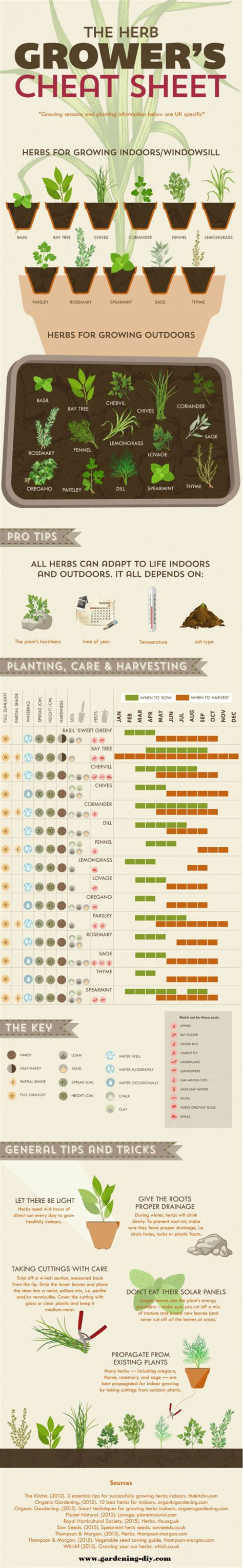 herb grower s cheat sheet an herb growing cheat sheet to love good to be home