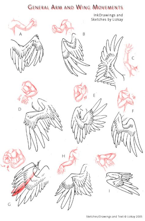 doodle things to draw 101 world s most easy and cool things to draw the things