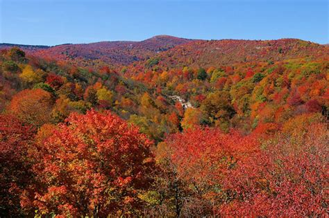 carolina fall colors asheville nc fall foliage color leaf report 2016