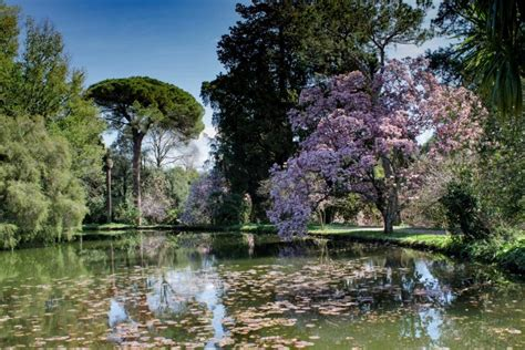 reggia di caserta giardino inglese alla scoperta giardino inglese della reggia di caserta