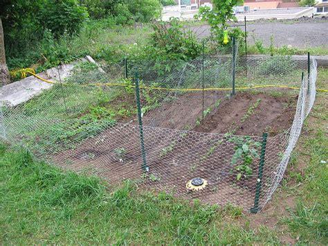 Rabbit Proof Vegetable Garden Vegetable Garden Fence Ideas Rabbits