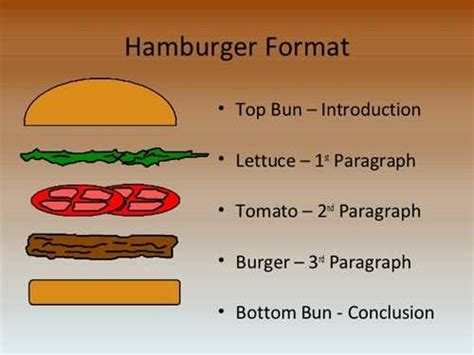 essay structure model in this hamburger paragraph i ve outlined a hamburger essay