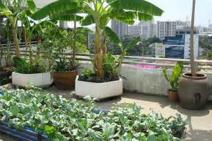 roof garden design to make home stunning livinghours