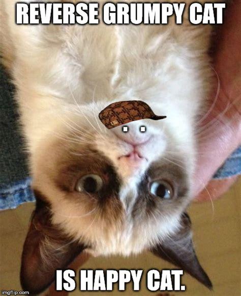 Grumpy Cat Meme Happy - reverse grumpy cat imgflip