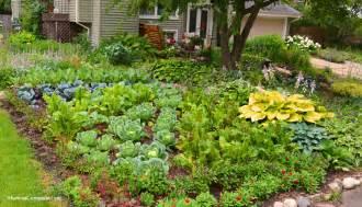 Front Yard Vegetable Garden Ideas Front Lawn Vegetable Garden Design Coronado