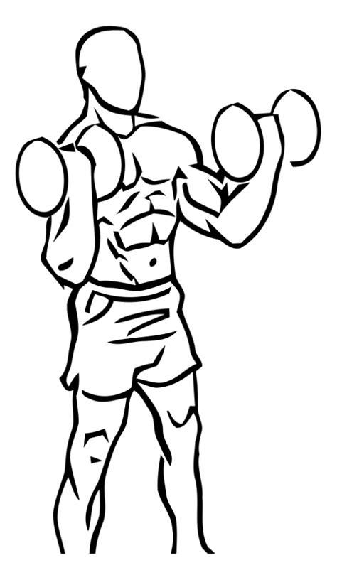 Le Curl haltères pour les biceps - exercice de musculation