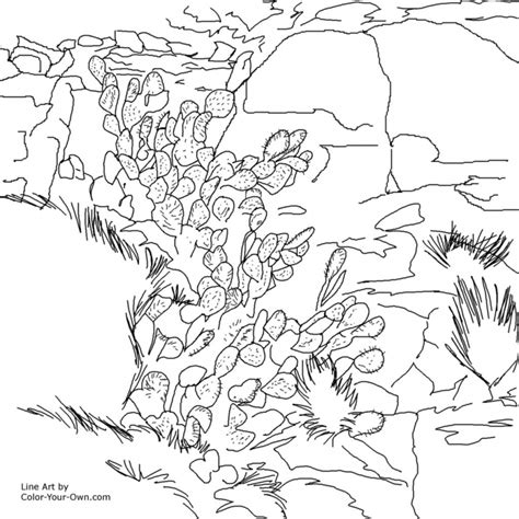 Coloring Page Rocks by Rocks Free Colouring Pages