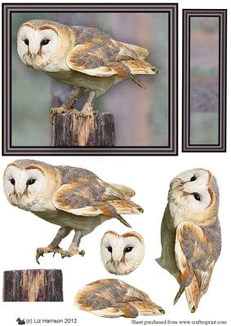 Owl Decoupage - barn owl 3d decoupage cup329350 15 craftsuprint