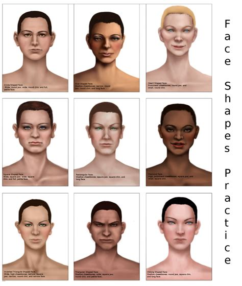 pictures of face shapes women face shapes women by aerorwen on deviantart