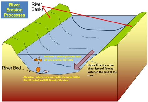 bed load definition river processes water on the land