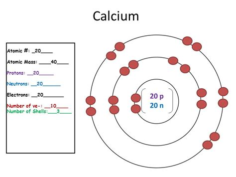 Protons Of Calcium by 20 Elements In The Periodic Table Ppt