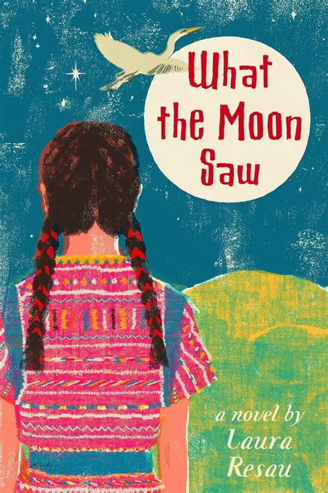 what i saw in america books book review what the moon saw vamos a leer