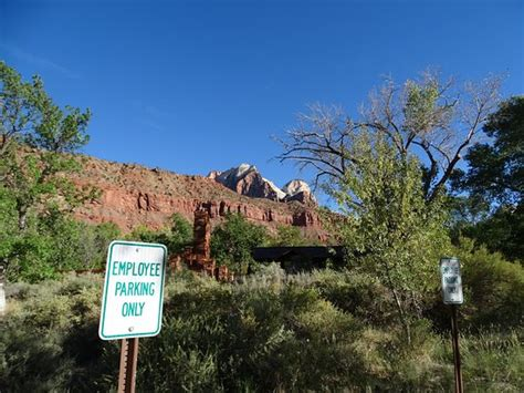 zion canyon visitor center  springdale