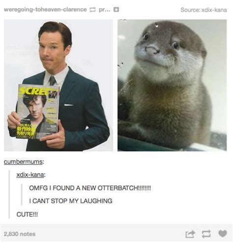 Cumberbatch Otter Meme - 638 best images about a sherlock fan art on pinterest