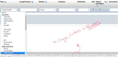 php date format like facebook php save time as integer timest in mysql via pdo as