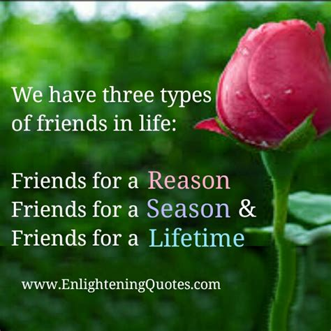 different types of friends quotes
