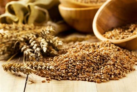 whole grains calcium munch on these foods for a better s sleep evolve daily