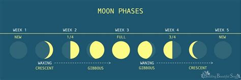 Best Moon Phase For Detox by How And Why To Cleanse Clear Tarot Cards Tarot Reading