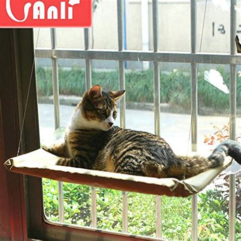 As Seen On Tv Cat Bed by Spiffy Pet Products Window Mounted Cat Bed Quot As Seen On Tv Quot