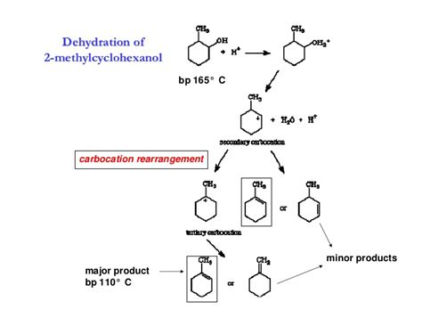 hydration of cyclohexene lab dehydration