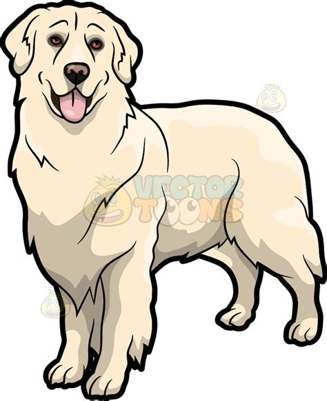 golden retriever restaurant an golden retriever pet clipart vector