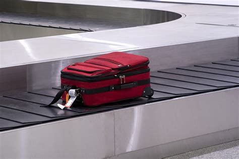 baggage laid out at airline luggage counter after flight lost and damaged baggage baggage information