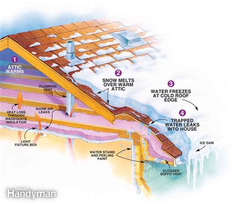 Best Ways To Prevent Roof Prevent Dams The Family Handyman
