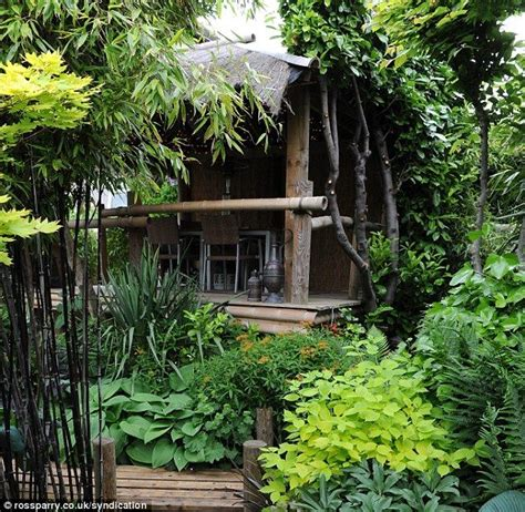 Jungle Backyard by Best 25 Jungle Gardens Ideas On Small Jungle
