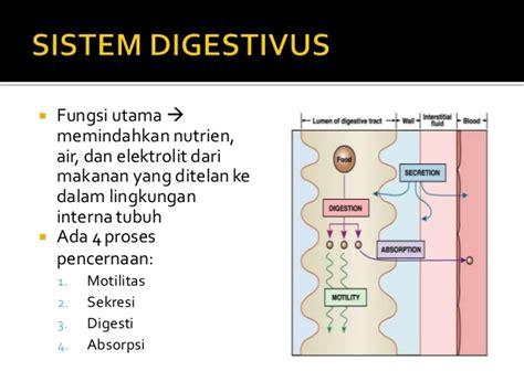 Fisiologi Manusia Edisi 8 By Lauralee Sherwood fisiologi sistem digestivus 1