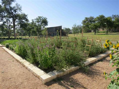 Community Vegetable Gardens C Capers S Troy Landscape Architect