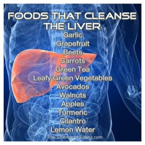 Liver Detox Diet For Psoriasis by Best 25 Foods To Cleanse Liver Ideas On