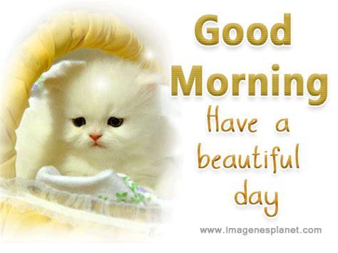 imagenes sobre good morning postales y tarjetas de buenos d 237 as para whatsapp