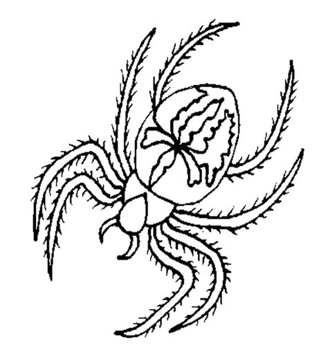 happy spider coloring page spider on its web 8 legs coloring page happy face spider
