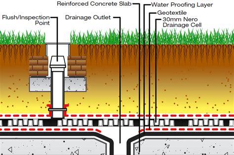 Low Light Plants by Rainsmart Solutions