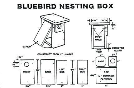bluebird house plans simplir me