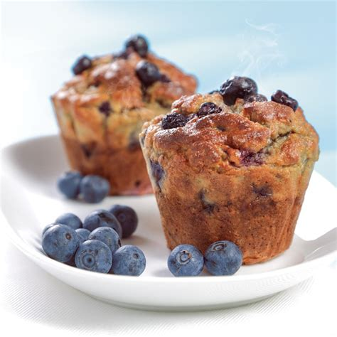 protein muffins protein muffin mix 14g complete protein per muffin the