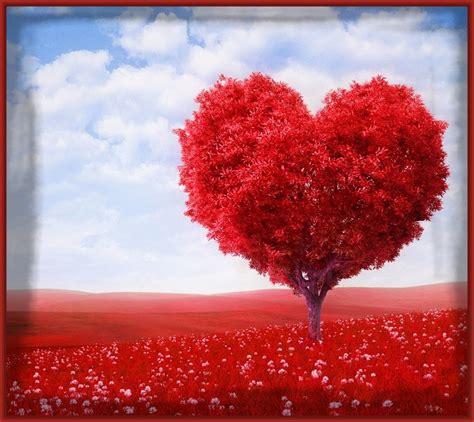 imagenes de amor y amistad corazones imagenes de corazon de amor para facebook archivos