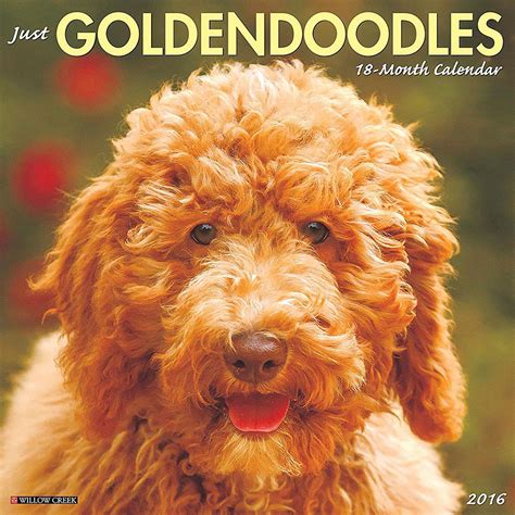 goldendoodle 2015 calendar 23 gorgeous gifts for who are obsessed with their