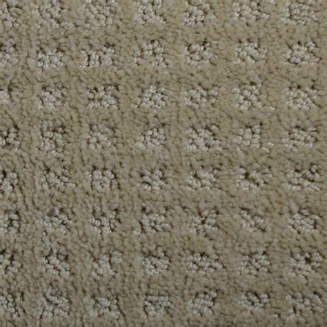 home decorators collection carpet sle traverse color ottawa pattern 8 in x 8 in ef trafficmaster multitask color playful pattern 12 ft