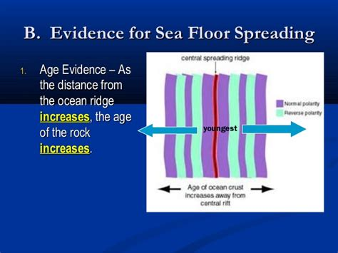 Used As Evidence For Sea Floor Spreading by The Dynamic Crust