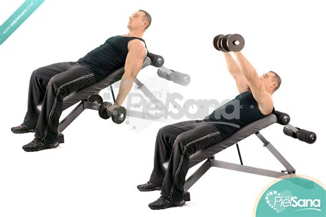 bench raise dumbbell front raise on incline bench images