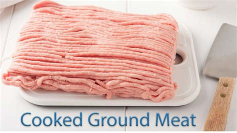 can dogs eat ground beef what of can i feed my brookfield animal