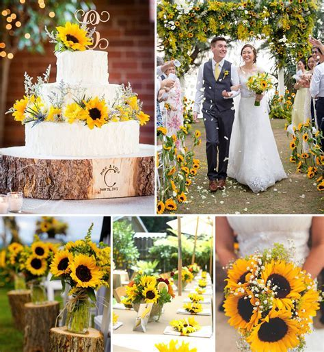 Top 10 Flowers for Outdoor Weddings   FiftyFlowers