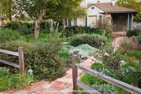 drought tolerant backyard designs landscaping landscaping ideas front yard drought tolerant