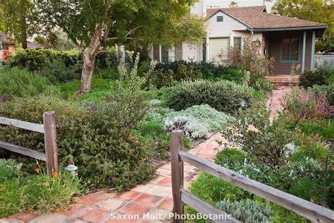 Drought Tolerant Backyard Ideas Landscaping Landscaping Ideas Front Yard Drought Tolerant