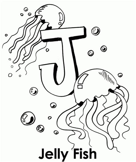 box jellyfish coloring page jellyfish coloring pages box jellyfish coloring pages
