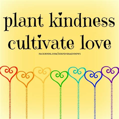themes of the book pay it forward 17 best images about planting kindness on pinterest