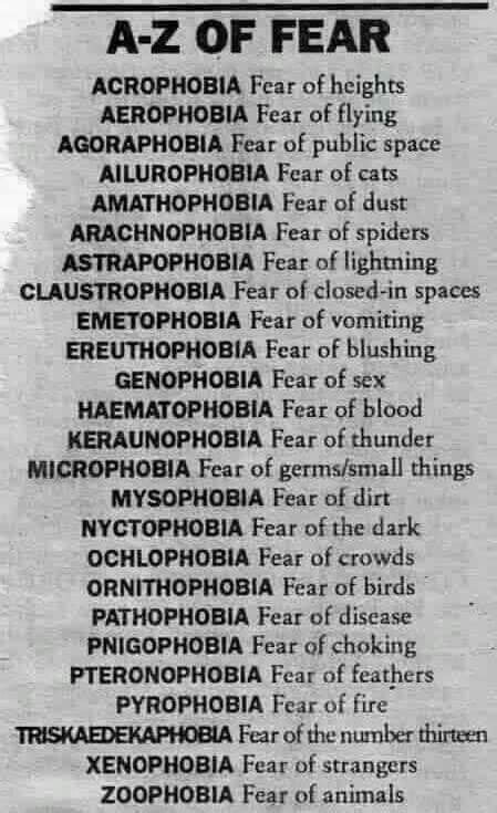 8 Most Common Phobias And How To Fight Them by Best 25 Common Phobias Ideas On Most Common