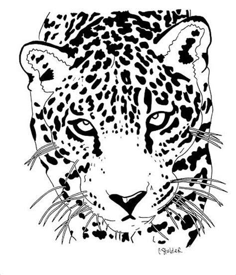 jaguar 1 drawing by candace stalder