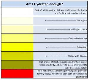 color of urine when dehydrated hydration for runners runner unleashed